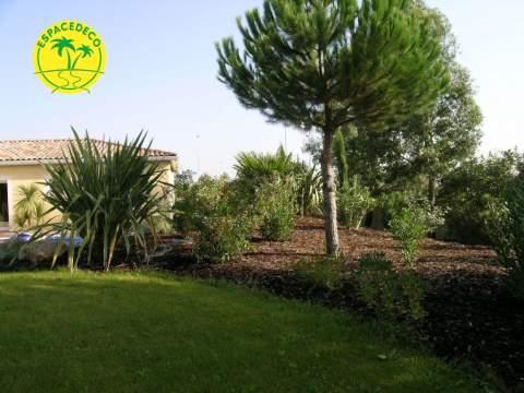 Artisan paysagiste réalise espace vert avec plantations à Colomiers