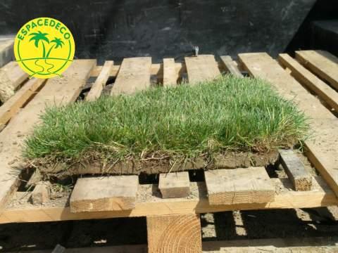 Pour garantir un gazon sans mauvaise herbe, nos paysagistes posent du gazon en rouleau.